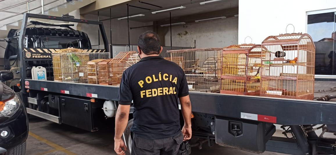 Polícia Federal deflagra operação em São Luís e Bequimão